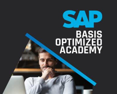 SAP-BASIS – OPTIMIZED ACADEMY – GESTÃO DE INFRAESTRUTURA