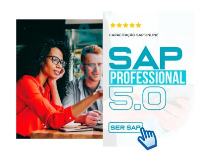 SAP PROFESSIONAL 5.0